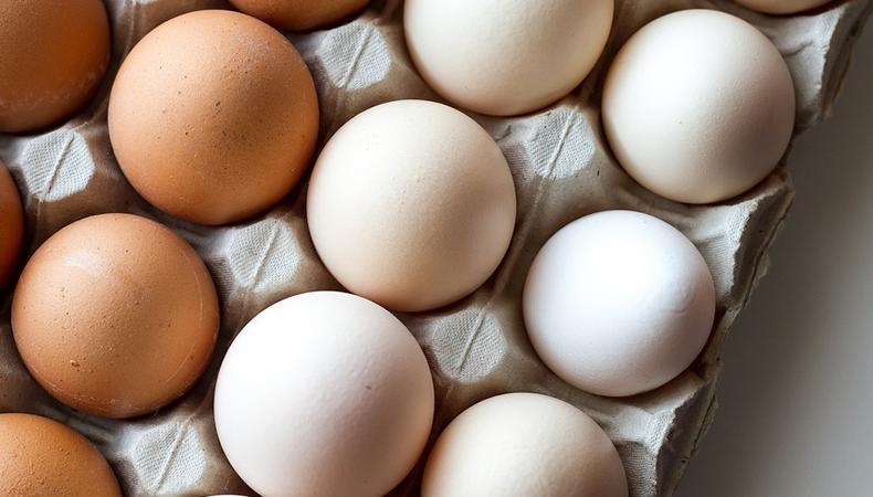 uova di gallina nel cartone