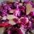 insalata di cavolo rosso con mele e noci