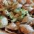 piatto di pasta conchiglie integrali con broccoli e pancetta