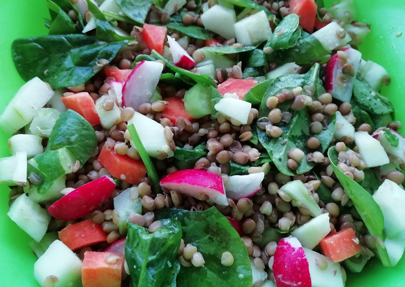 insalata di lenticchie con verdure estive