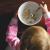 i bambini italiani mangiano troppi zuccheri, proteine e grassi